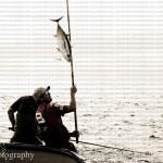jimephotographyy (158 of 236)_jpg