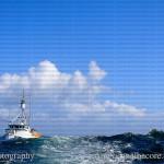jimephotographyy (226 of 236)_jpg