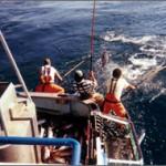 new-fishing-03