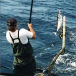 new-scott-fishing