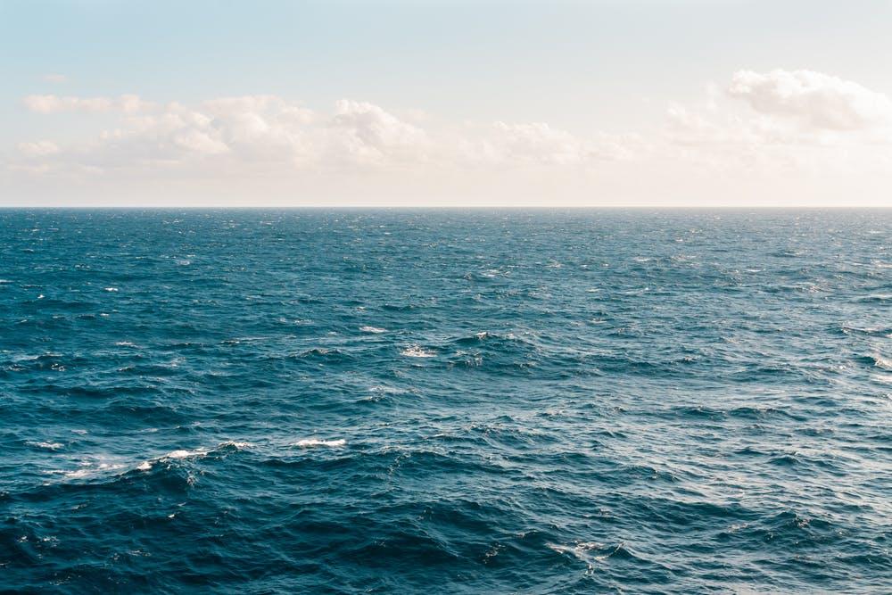 NOAA FishNews Highlights