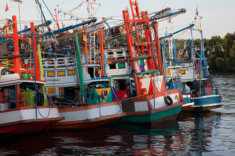 Clipper Oil: Latest Fishing News – Thai Union Sees Record Second Quarter Growth, Profit Up 37%