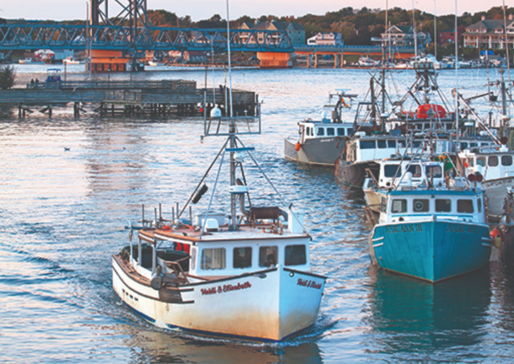 National Fisherman: Fight for the right to fish